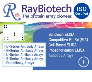 [RayBiotech]理�泥⑤�� Protein Array湲곗�� 蹂댁�� Clamp